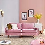 DADEA Sofa 2 Sitzer, Kippsofa Sofa Samt mit Schlaffunktion, Polstersofa mit Armlehnen im modernen Design, Mit Bettkasten, für kleine Wohnung Gästezimmer Jugendzimmer